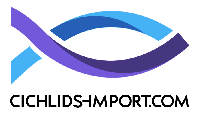 cichild import europe