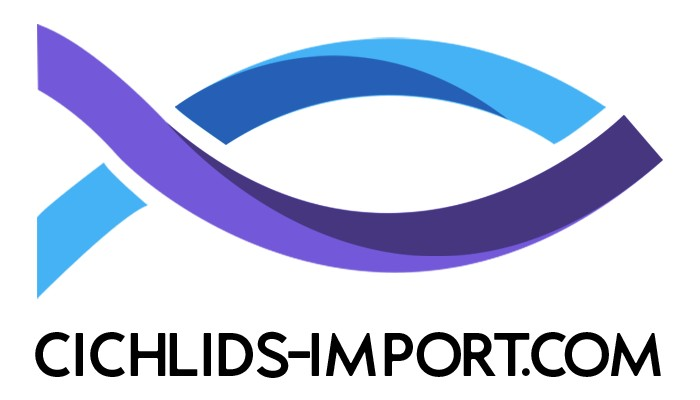 CICHLIDS IMPORT  Cichlidés africains